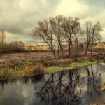 Artystyczne zdjęcie przyrody nagłówek bloga Miechowka