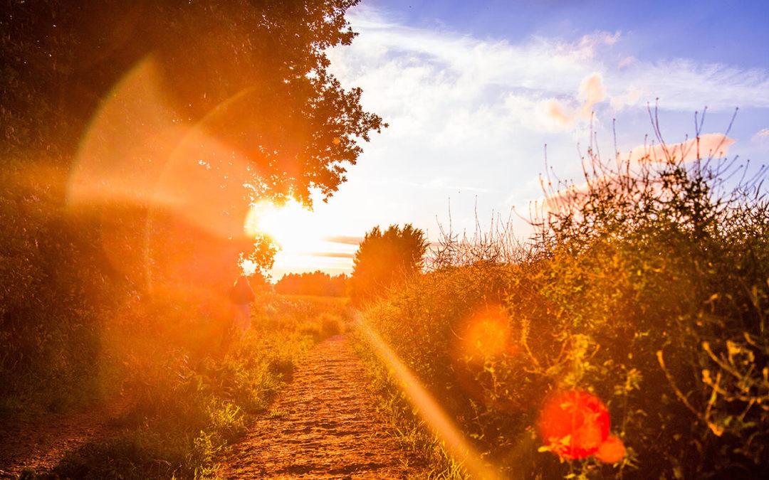 Droga do spełnienia marzeń – Prolog